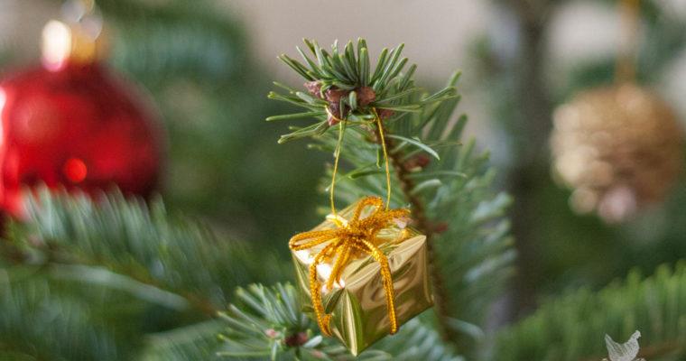 Bon cadeau et promo spécial Noël !